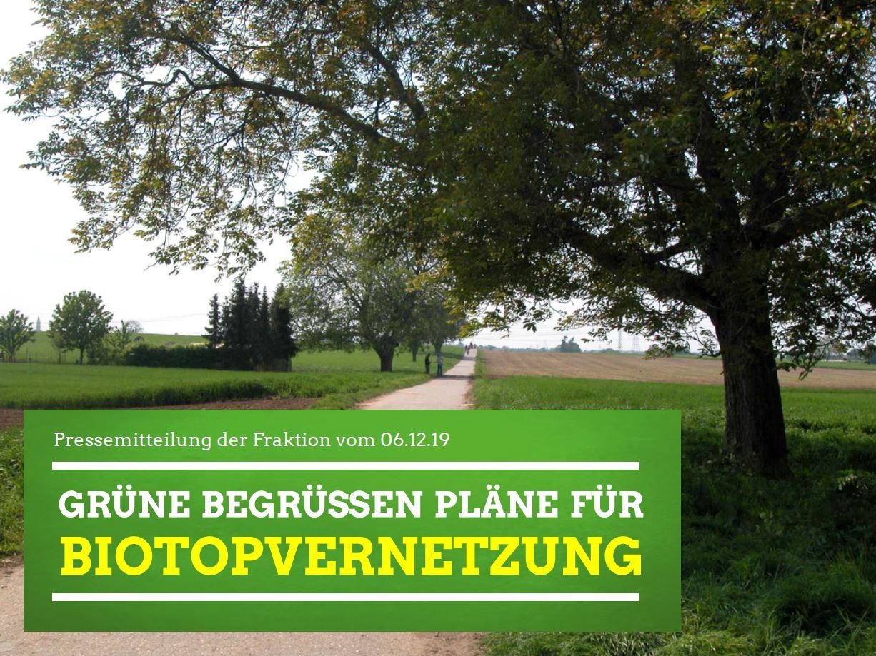 Grüne begrüßen Pläne für Biotopvernetzung
