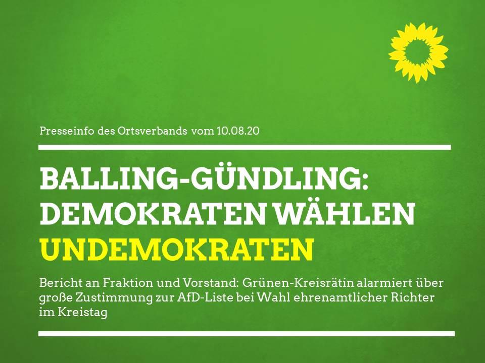"""""""Demokraten wählen Undemokraten"""" – Grünen-Kreisrätin alarmiert wegen großer Zustimmung für AfD-Liste"""