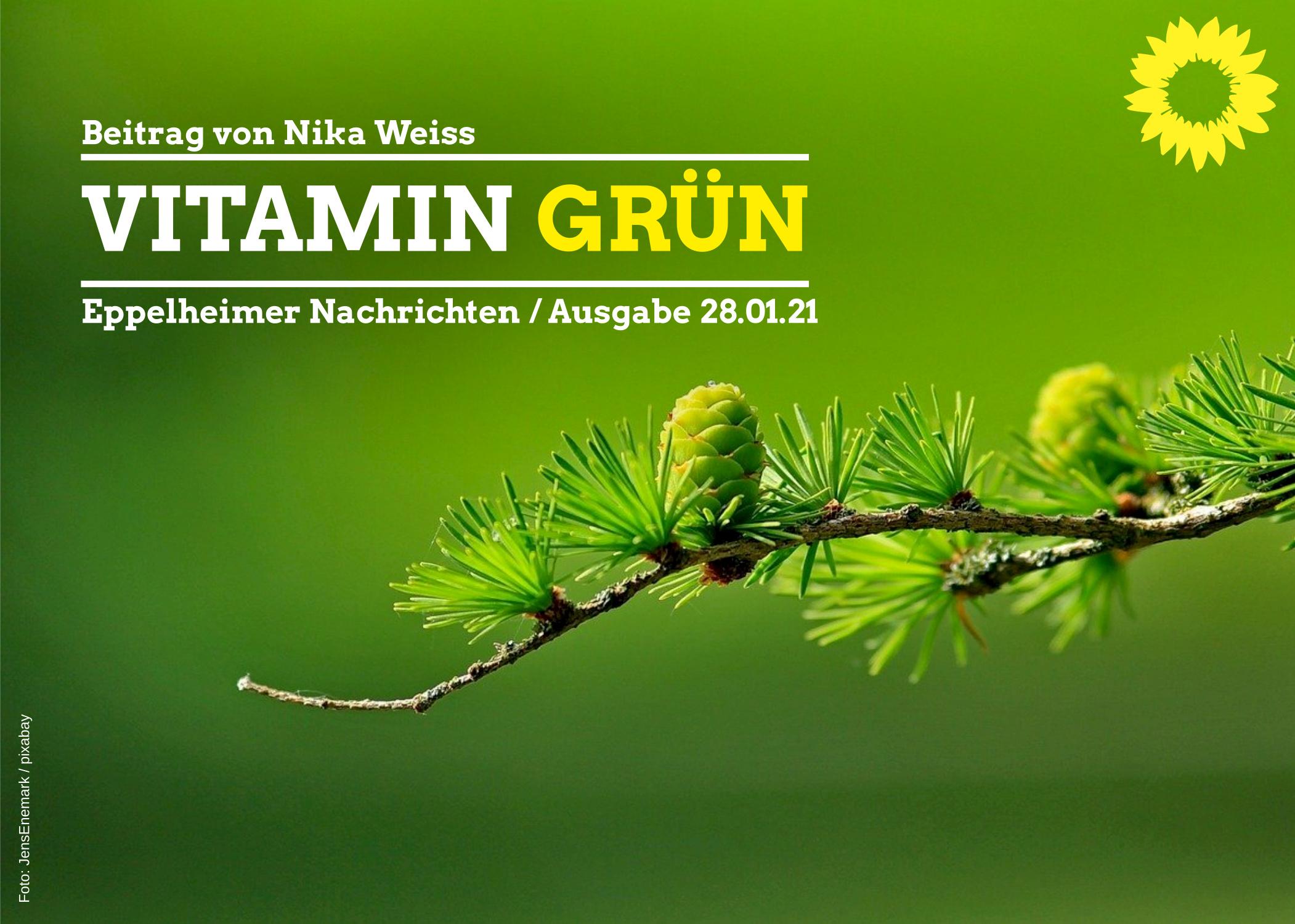 Vitamin Grün