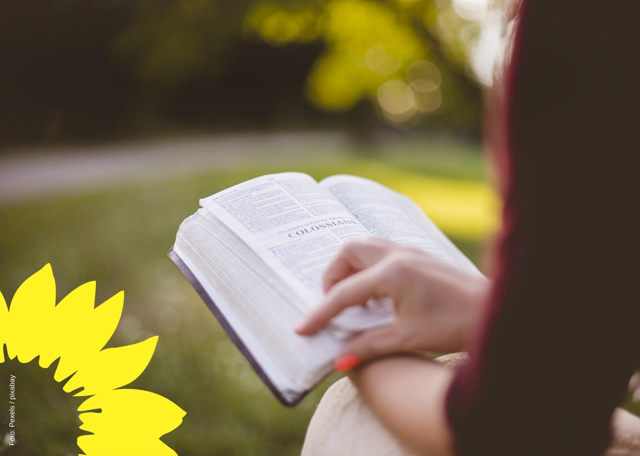 Lesen! – Zum Tod von Johannes Laping
