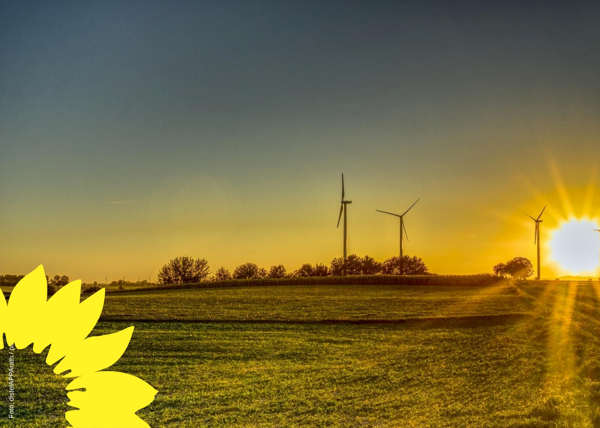 Rhein-Neckar-Kreis mit Nachholbedarf im Klimaschutz