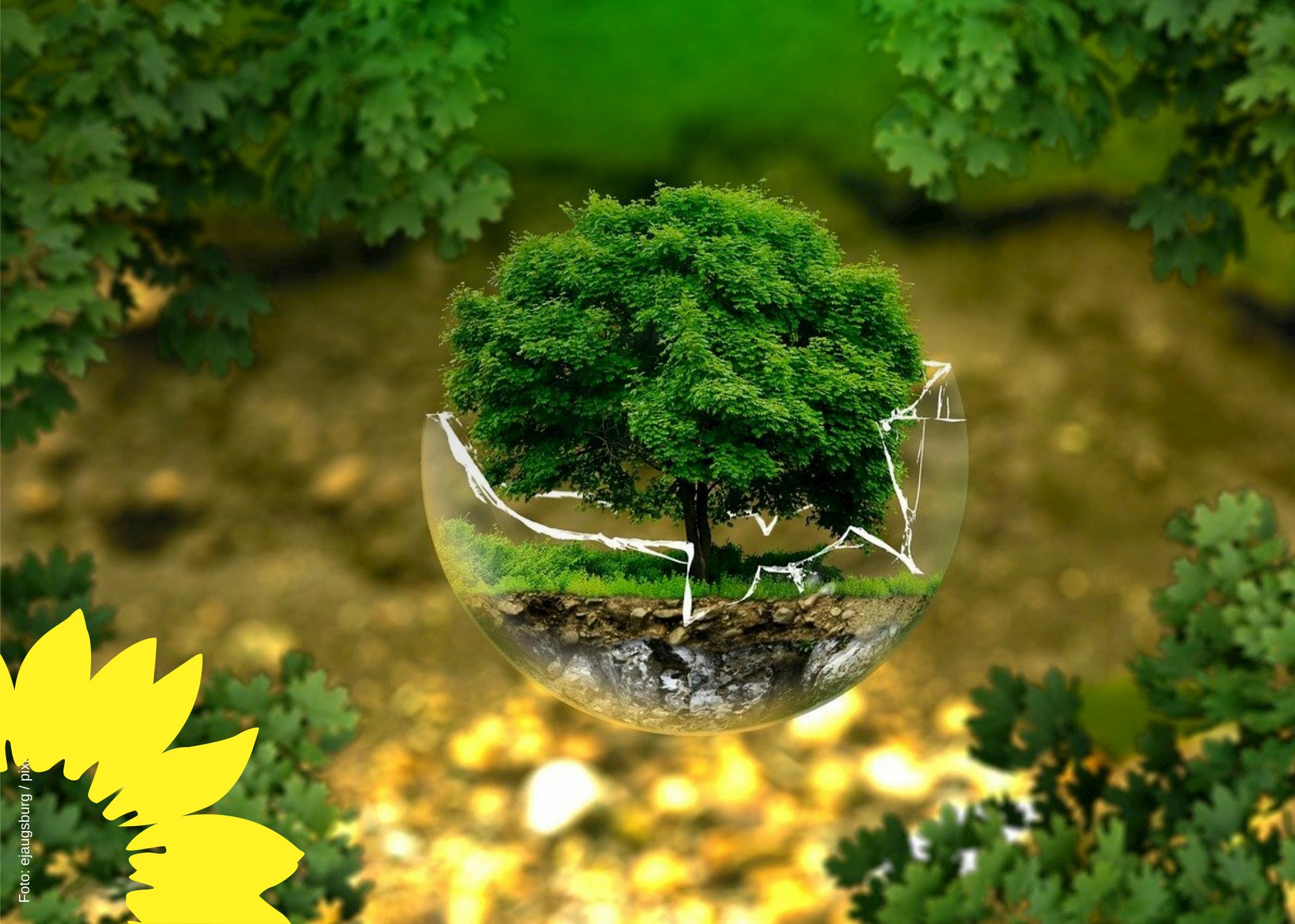 Eppelheim: Klimaschutz beginnt hier und jetzt