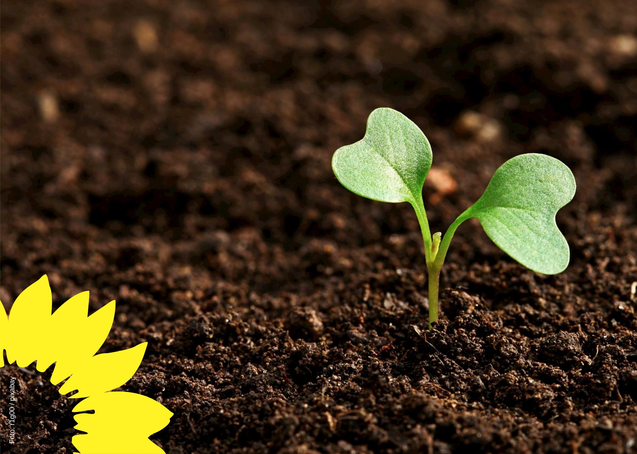 Boden ist nicht vermehrbar
